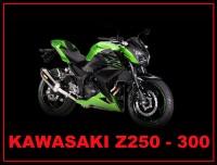 Z250/300