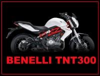 TNT 300