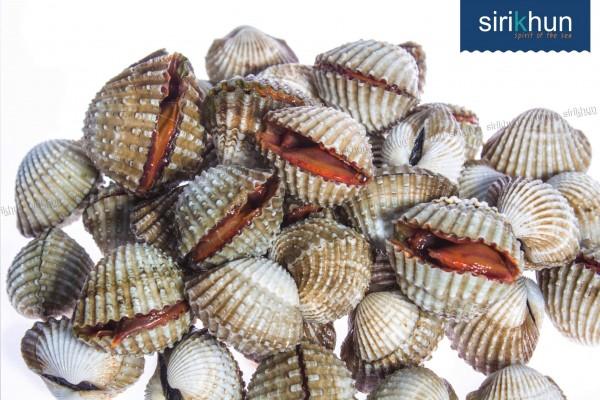 หอยแครง|สินค้า_๑๗๐๙๐๔_0006.jpg