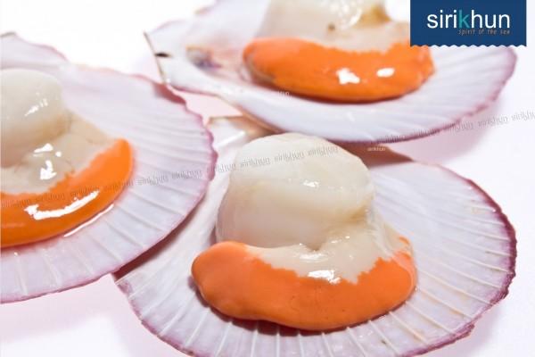 หอยเชลล์ฝาเดียว|สินค้า_๑๗๐๙๐๔_0004.jpg