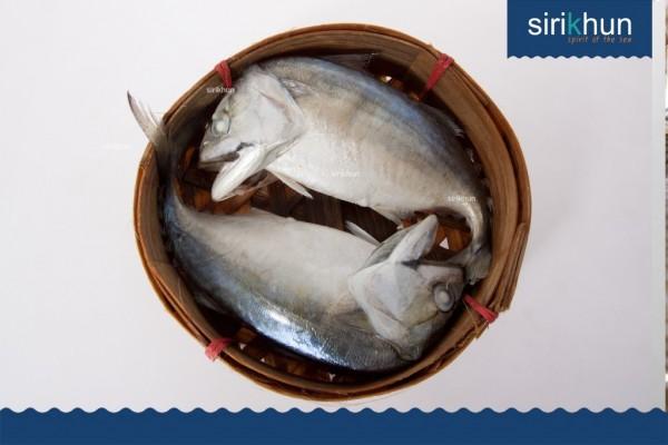 ปลาทูนึ่ง|IMG_1414.JPG