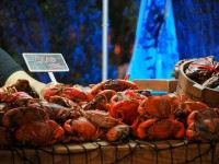 BluPort Crab Festival