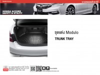 Modulo Trunk Tray