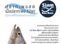 ขอบคุณที่สนับสนุนปลากระพงไทย