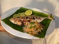 ปลาสีกุนย่าง ทำแบบญี่ปุ่น ราคาสุดโหด