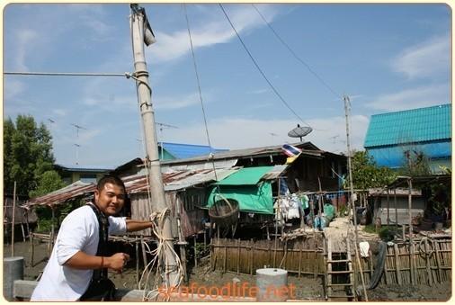 บางตะบูน หมู่บ้านเนื้อปูพันธุ์แท้|203.JPG