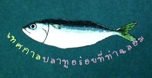 เทศกาลปลาทูสาว ขาวๆ อวบๆ ที่ ท่าฉลอม|501.jpg