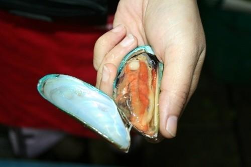 หอยไทย เจอของนอก (Party seafood @2)|105.JPG