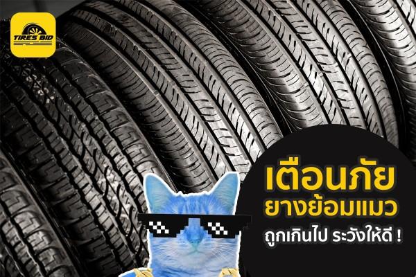 TIRESBID รีวิวเกร็ดความรู้ : เตือนภัยยางย้อมแมว ถูกเกินไปต้องระวังให้ดี|เตือนภัยยางย้อมแมว_17.10.2018_1200x800_.jpg